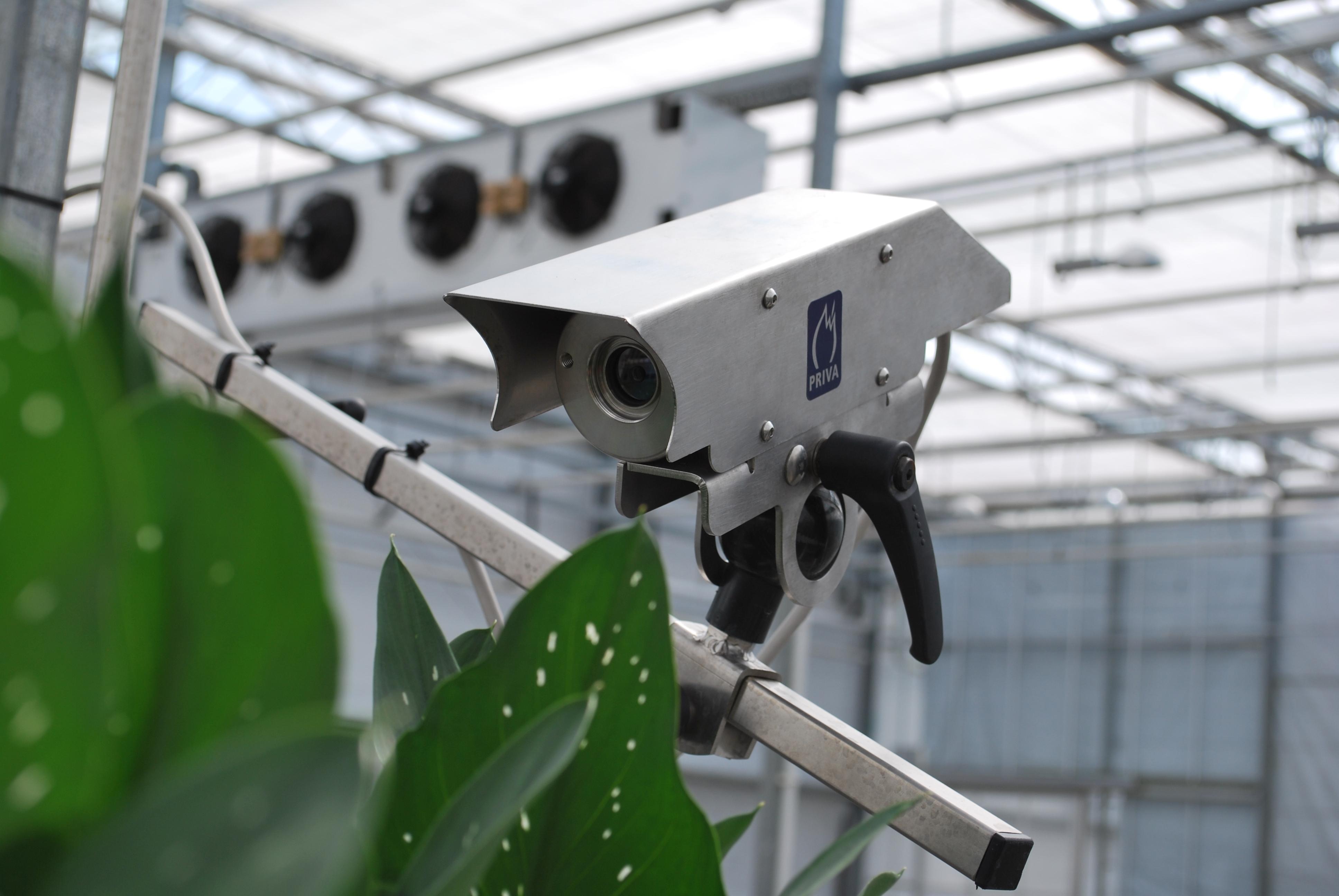 Priva Topcrop Monitor 作物监测系统(北京普瑞瓦国际贸易有限公司) 照片