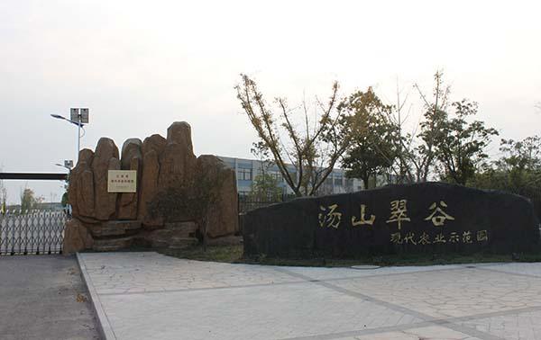 南京新农科创投资有限责任公司 照片