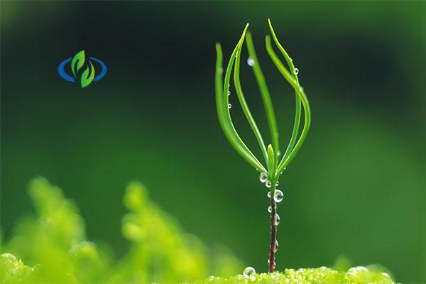 上海绿立方农业发展有限公司 照片